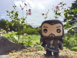 Thorin enjoying the scenery
