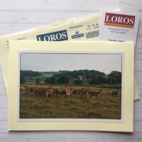Passing on LOROS' Thanks